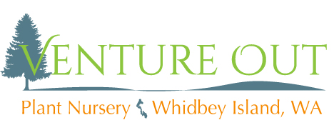 Venture Out Plant Nursery Whidbey Island